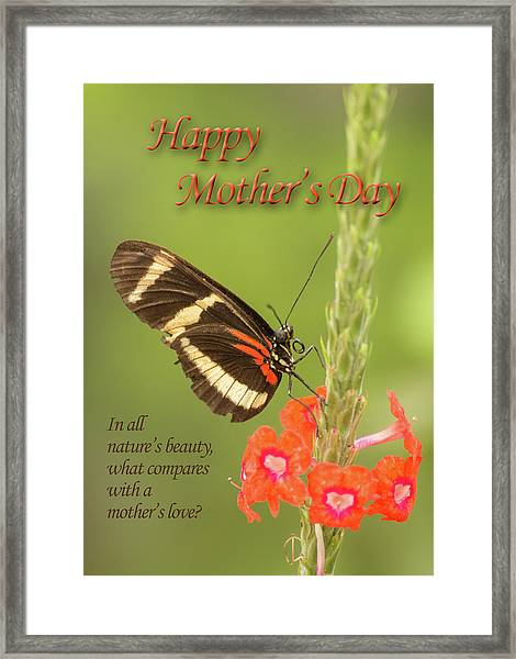 Mother's Day-butterfly Framed Print