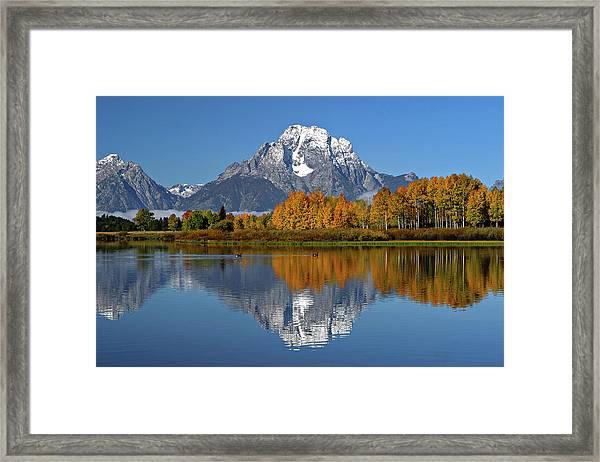 Mount Moran Framed Print