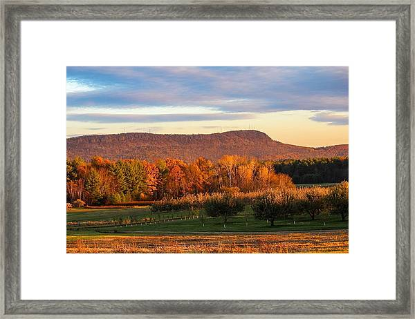 Mount Tom Foliage View Framed Print