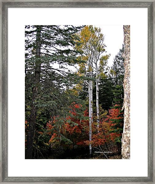 Mountain Autumn Framed Print