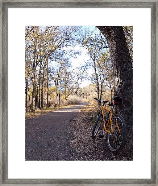 Mountain Bike Trail Framed Print