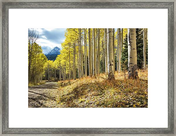 Mountain Highlights Framed Print