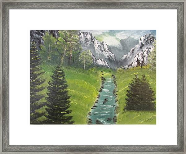 Mountain Meadow Framed Print