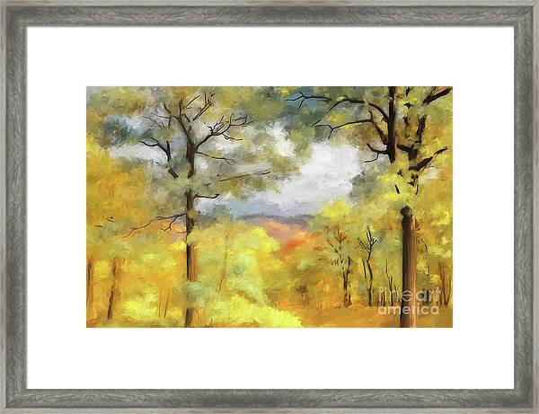 Framed Print featuring the photograph Mountain Morning by Lois Bryan