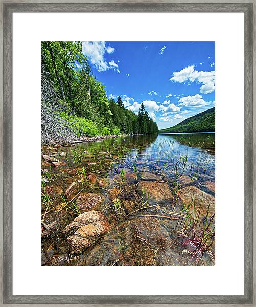 Framed Print featuring the photograph Mountain Pond by David A Lane