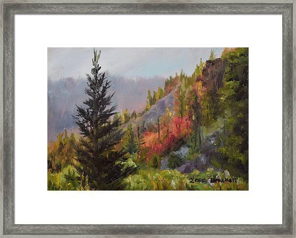 Mountain Slope Fall Framed Print