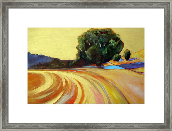 Mountain Winery Gold Framed Print by Claire Whitehead