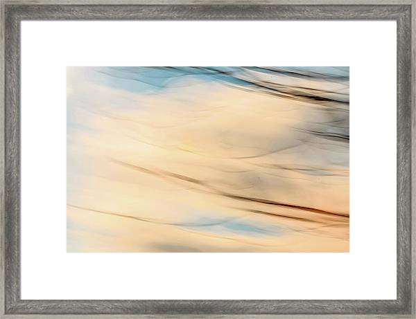 Moving Branches Moving Clouds Framed Print