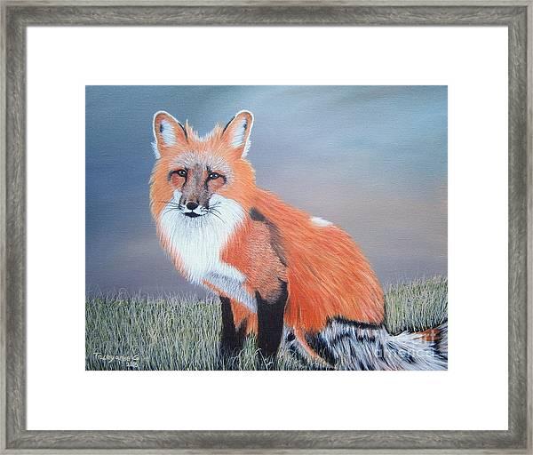 Mr. Fox Framed Print