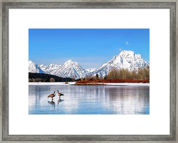 Mt Moran With Geese Framed Print