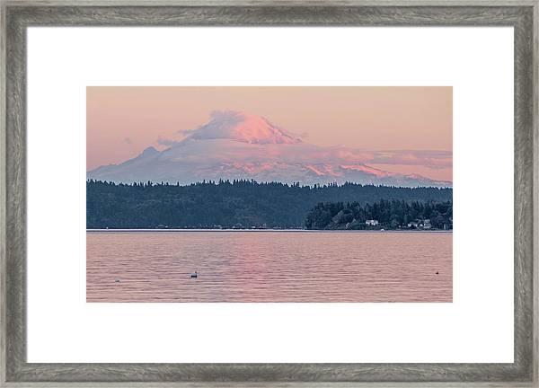 Mt. Rainier At Sunset Framed Print
