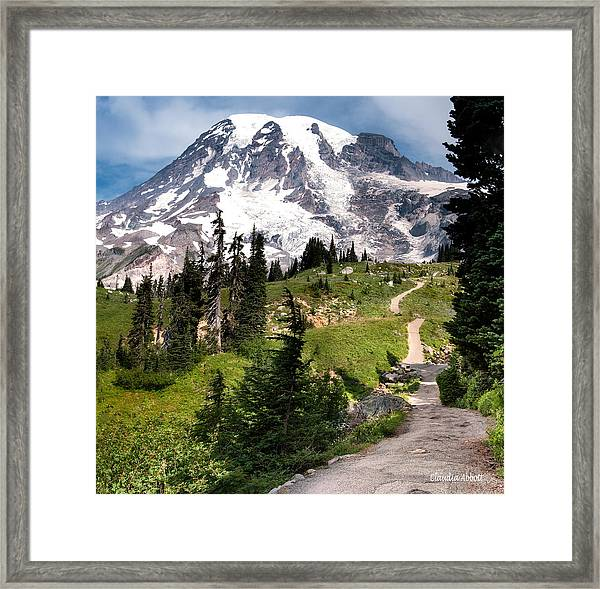 Framed Print featuring the photograph Mt. Rainier by Claudia Abbott