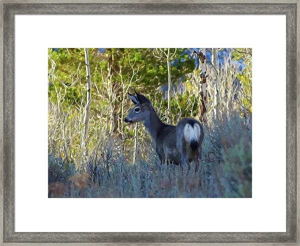Mule Deer A Stylized Landscape By Frank Lee Hawkins Framed Print