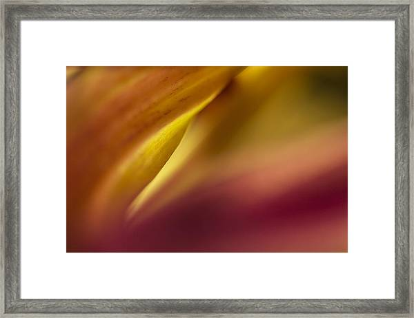 Mum Abstract Framed Print