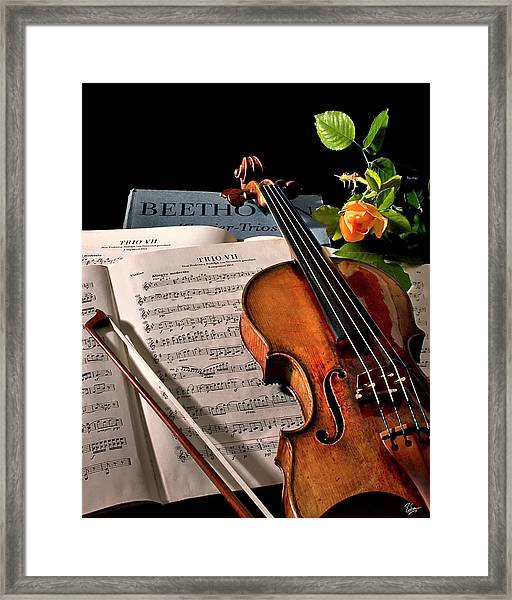 Music Is A Moral Law Framed Print