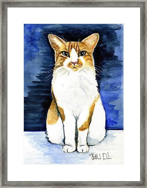 Mustached Bicolor Beauty - Cat Portrait Framed Print