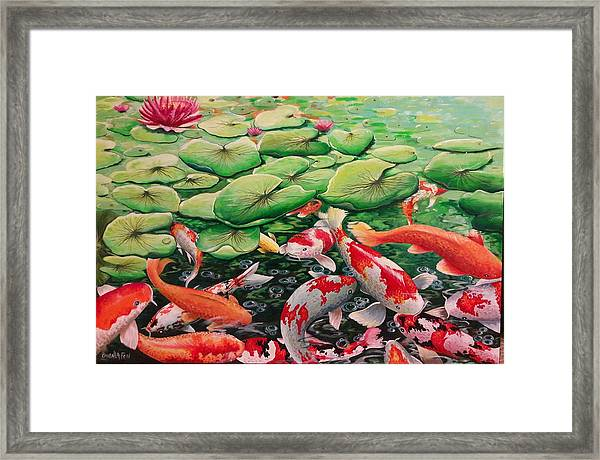 My Backyard Pond Framed Print