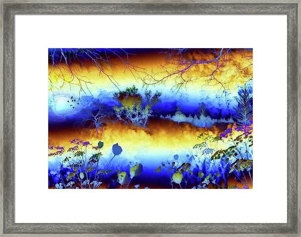My Blue Heaven Framed Print