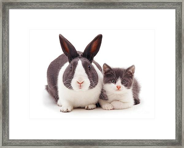My Brother From Another Mother Framed Print
