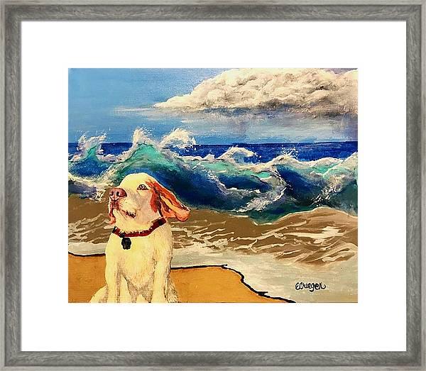 My Dog And The Sea #1 - Beagle Framed Print