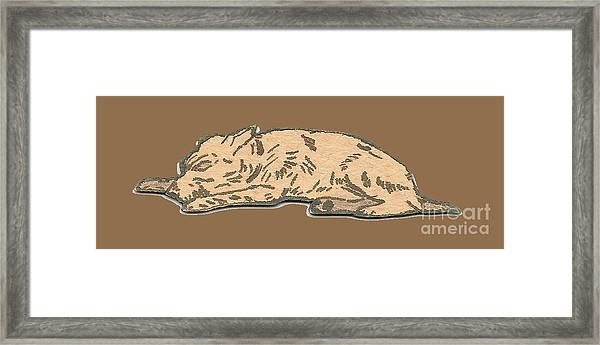 My Dog Tricksy Sleeping Framed Print