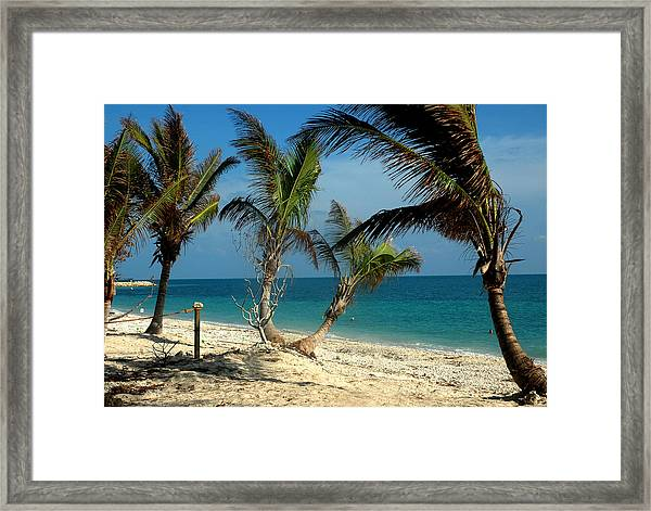 My Favorite Beach Framed Print