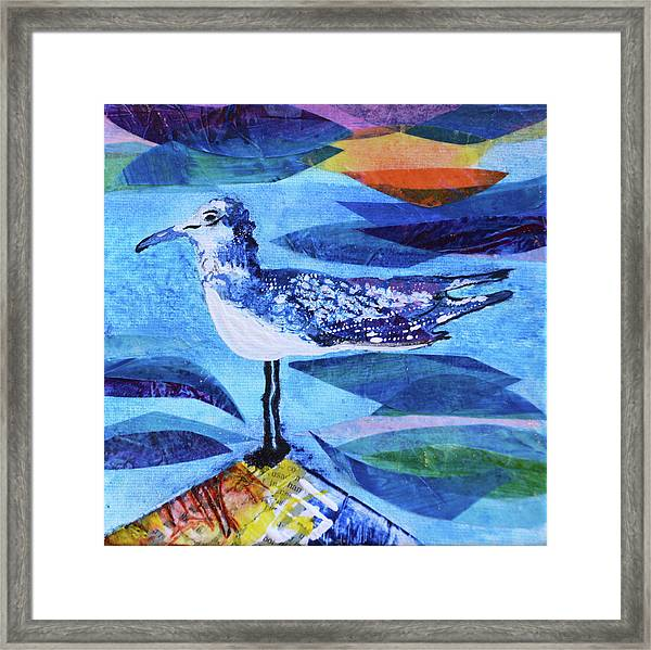 My Tern Framed Print