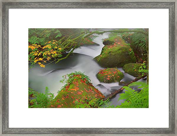 Mystic Autumn Framed Print