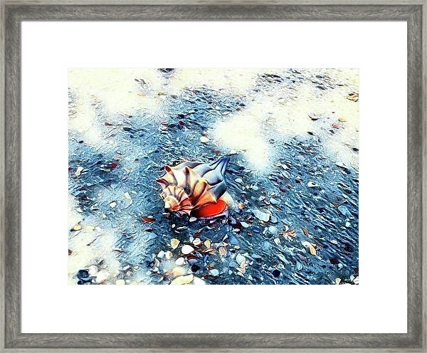 Mystic Conch Framed Print