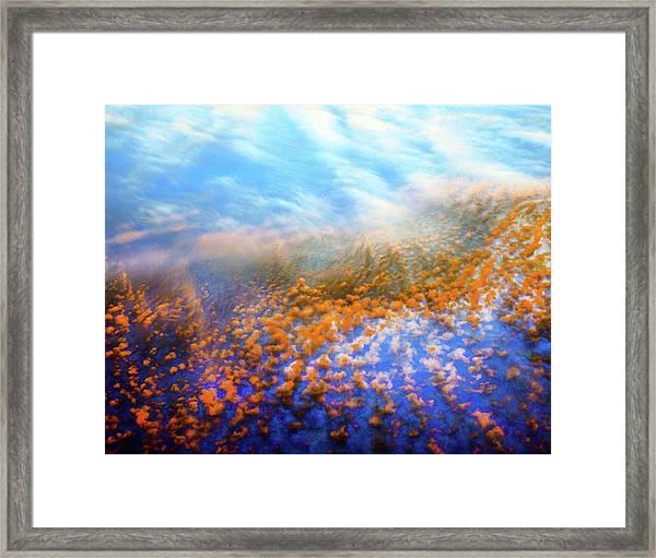 Mystic Field Framed Print