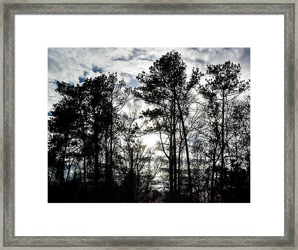 Mystic Wilderness Framed Print