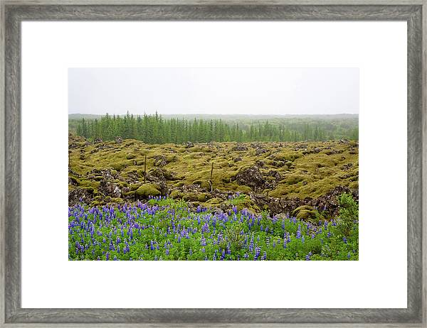 Framed Print featuring the photograph Mystical Island by Matthew Wolf