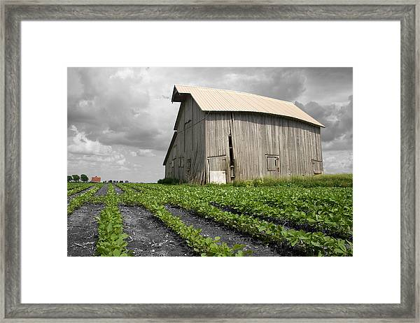 Framed Print featuring the photograph N 1650 East by Dylan Punke