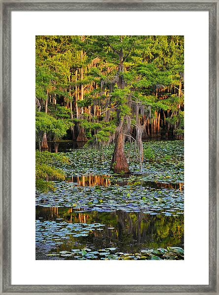 Framed Print featuring the photograph Naked by Skip Hunt
