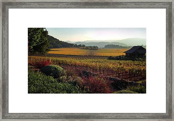 Napa Valley California Framed Print