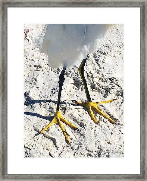 Naples 1 Framed Print