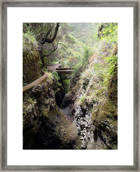 Narrow Path Framed Print