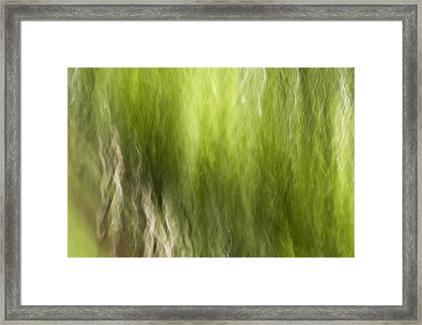 Nash Square Framed Print