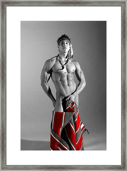 Native American IIi Framed Print by Dan Nelson