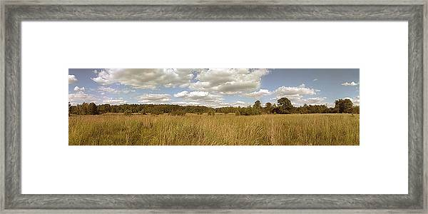 Natural Meadow Landscape Panorama. Framed Print