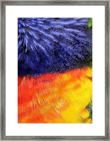 Natural Painter Framed Print