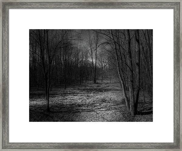 Natural Path Framed Print