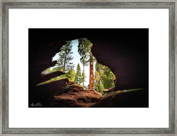 Natural Window Framed Print