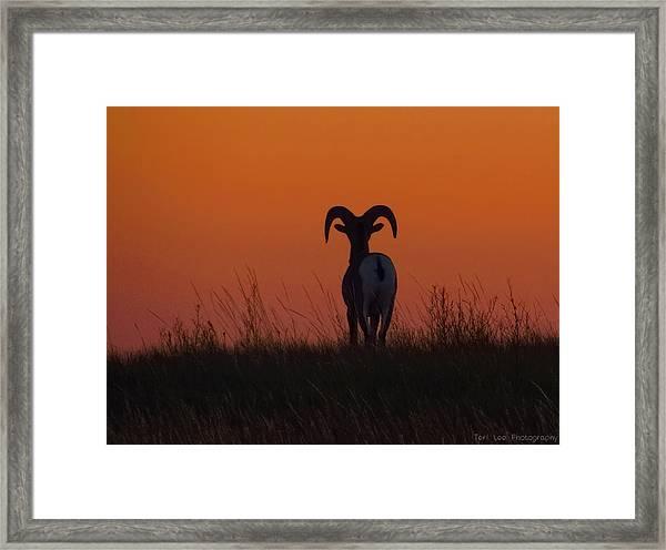 Nature Embracing Nature Framed Print