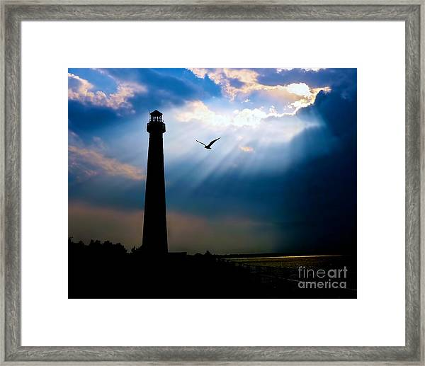 Nature Shines Brighter Framed Print