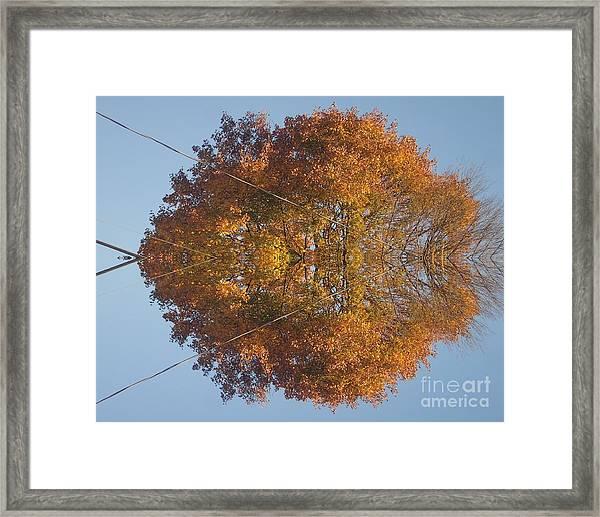 Nature Unleashed Framed Print
