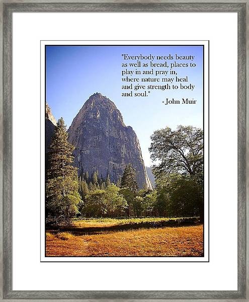 Natures Cathedral Framed Print