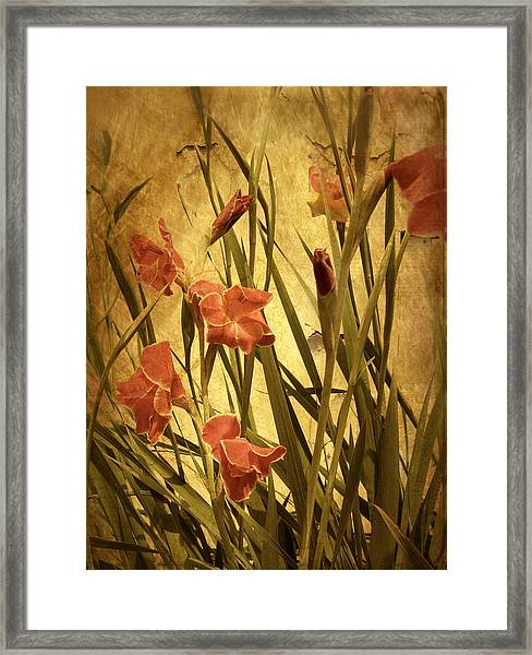Nature's Chaos In Spring Framed Print
