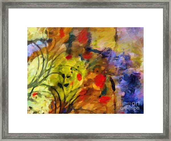 Natures Colorplay Framed Print