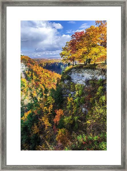 Natures Colors Framed Print